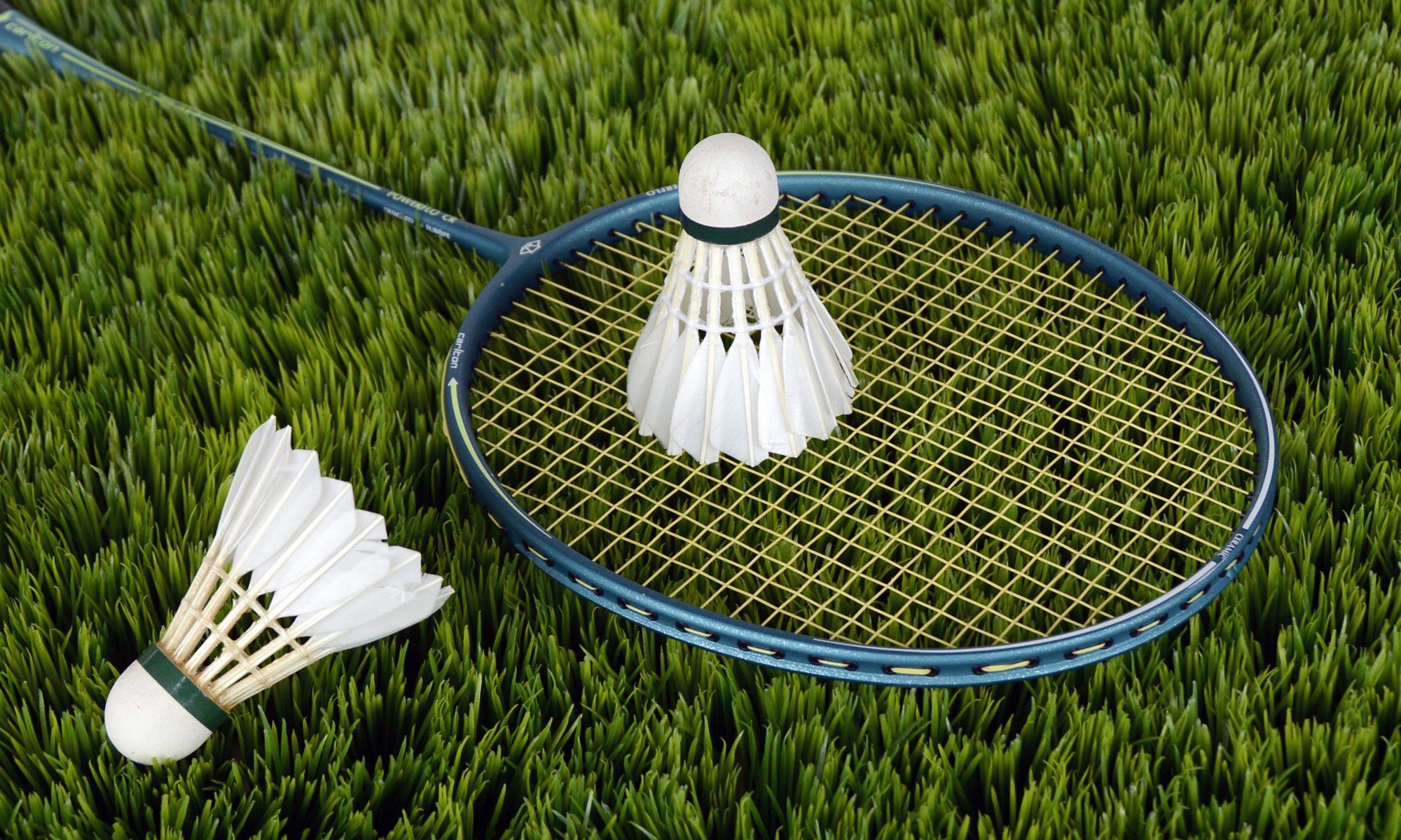 SLH Rayleigh Badminton Club